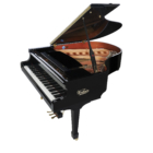 Wertheim Euro 170 with piano disc