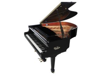 Wertheim Euro 170 with piano disc